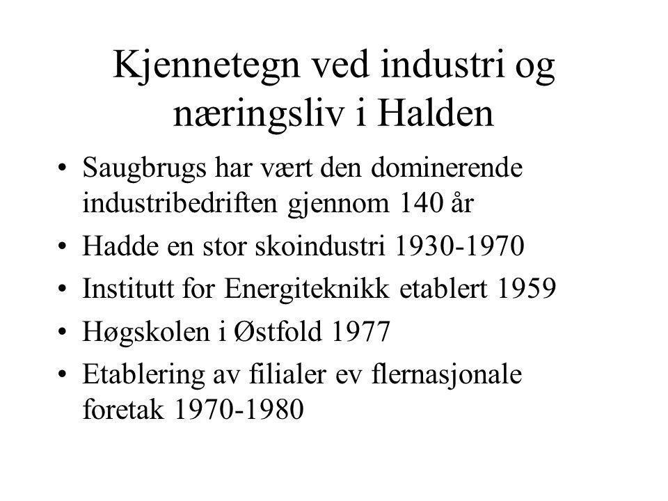 Kjennetegn ved industri og næringsliv i Halden