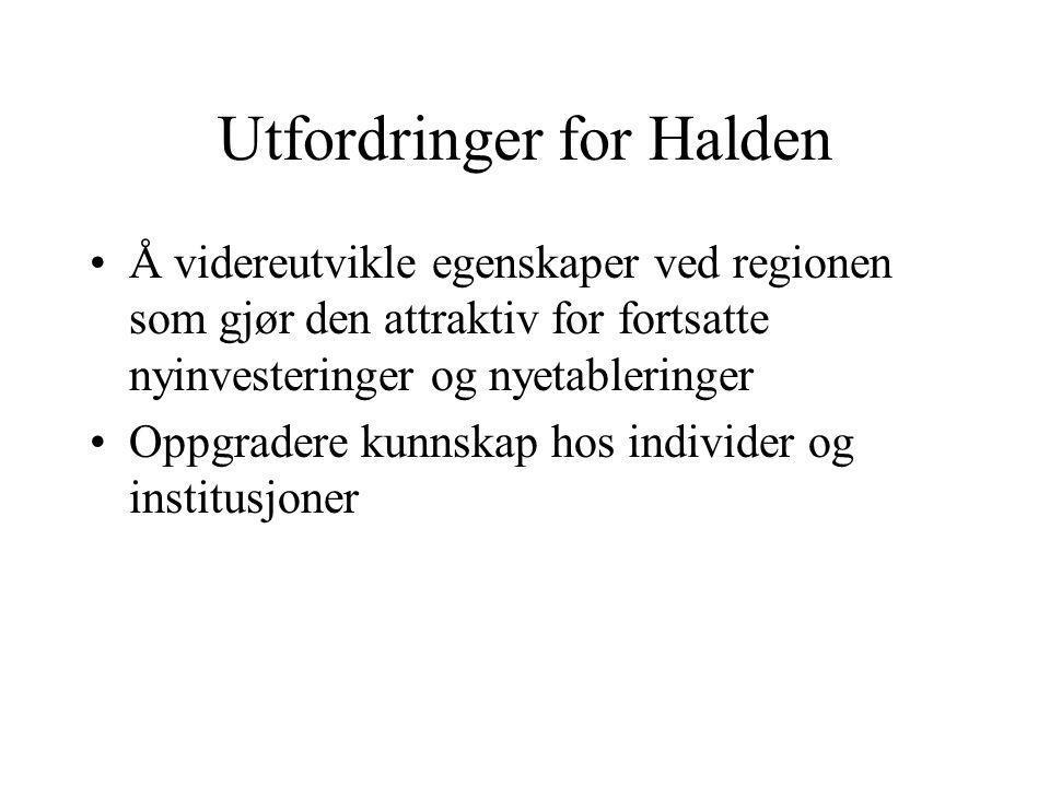 Utfordringer for Halden