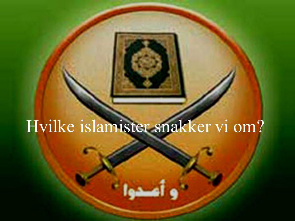 Hvilke islamister snakker vi om