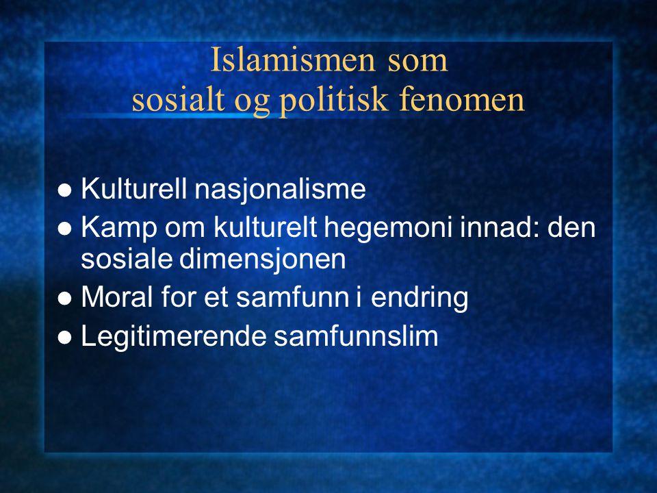 Islamismen som sosialt og politisk fenomen