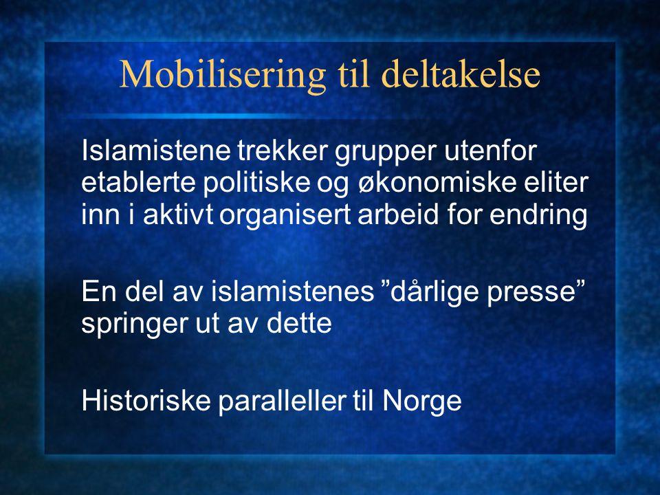 Mobilisering til deltakelse