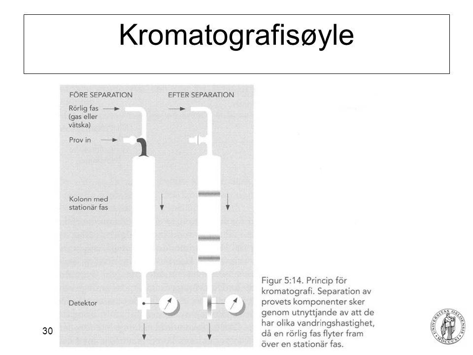 Kromatografisøyle