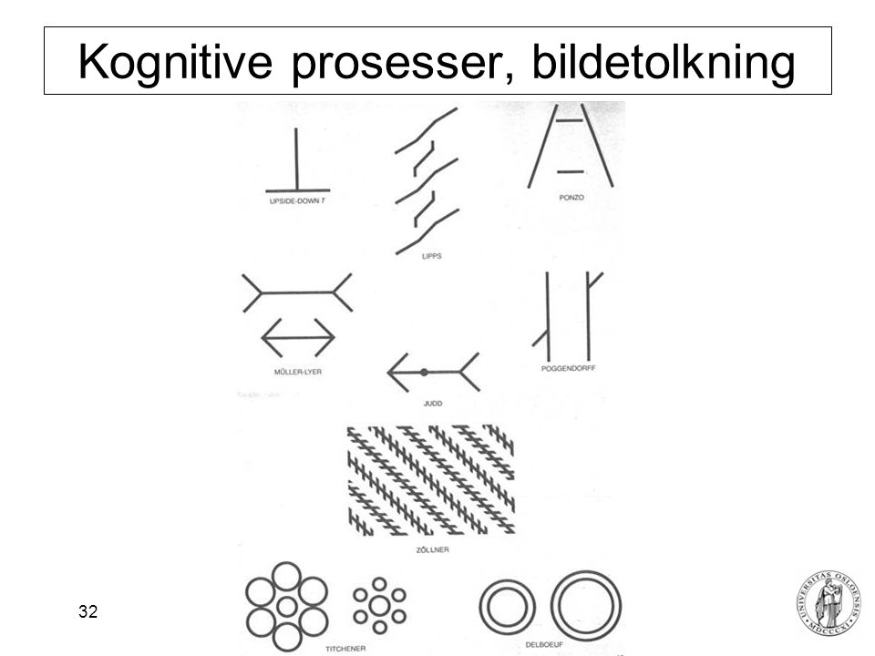 Kognitive prosesser, bildetolkning