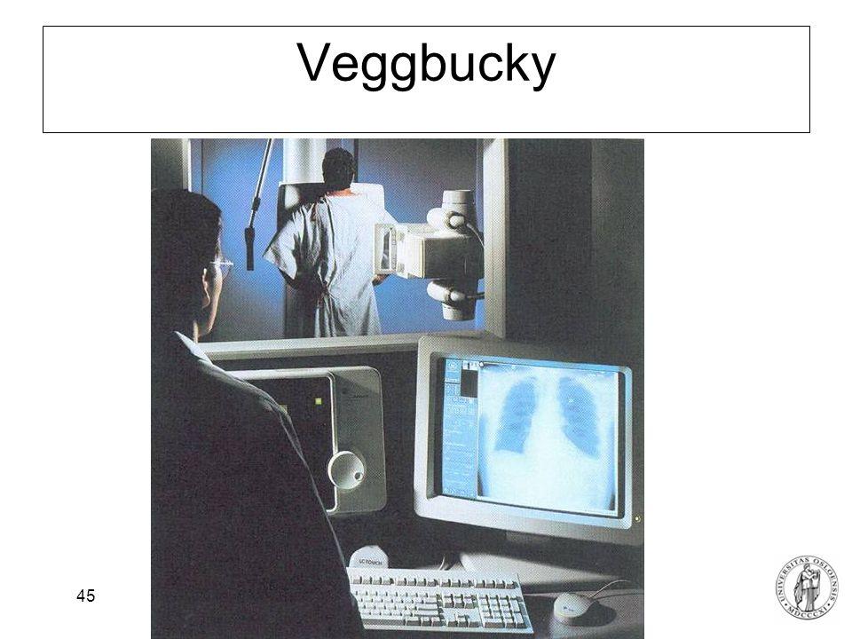 Veggbucky