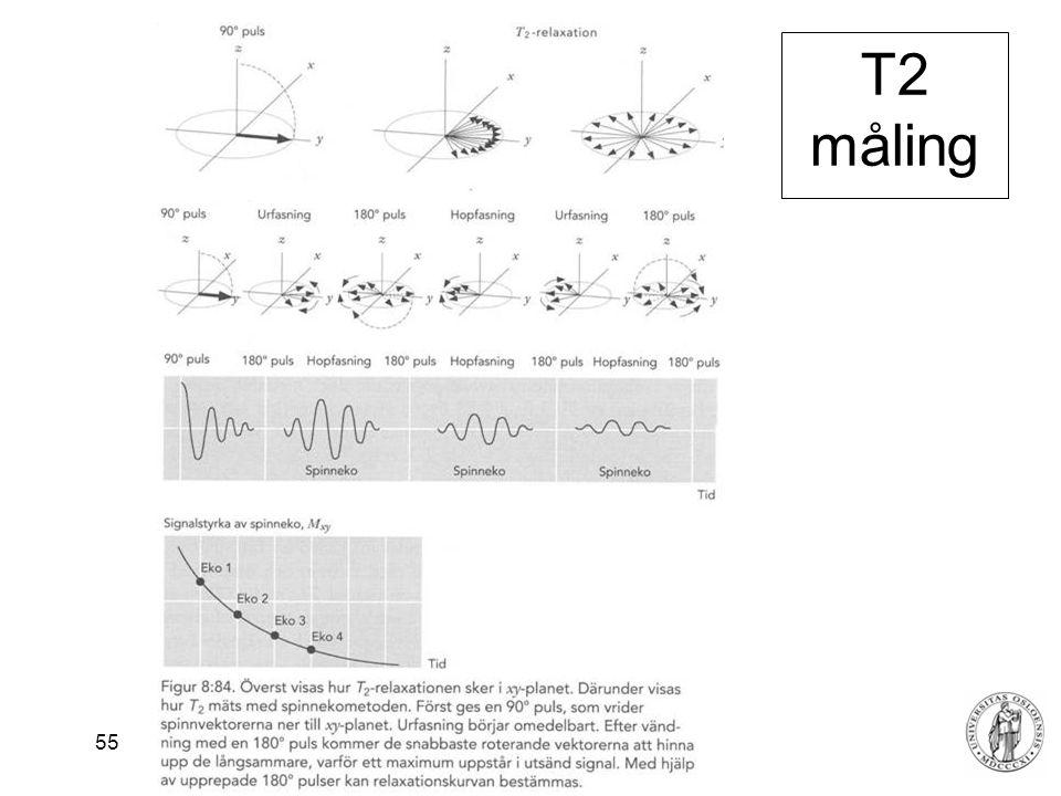 T2 måling