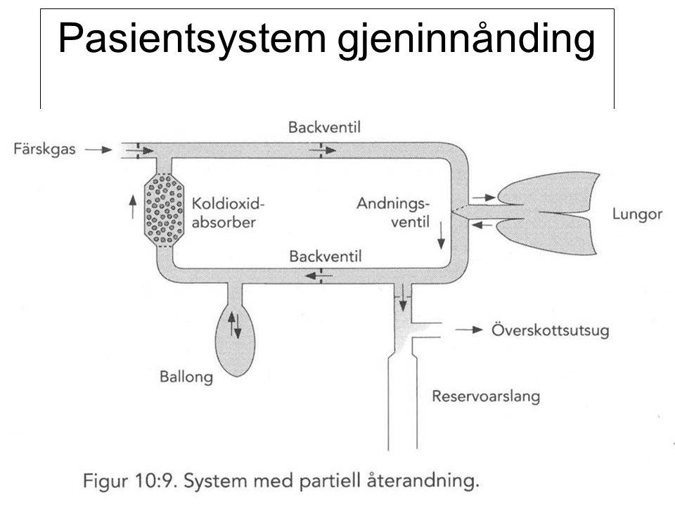 Pasientsystem gjeninnånding