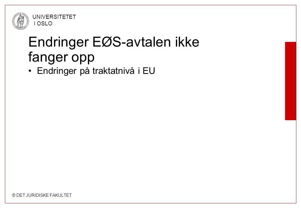 Endringer EØS-avtalen ikke fanger opp