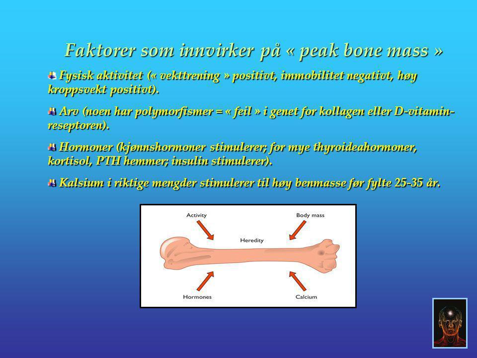 Faktorer som innvirker på « peak bone mass »