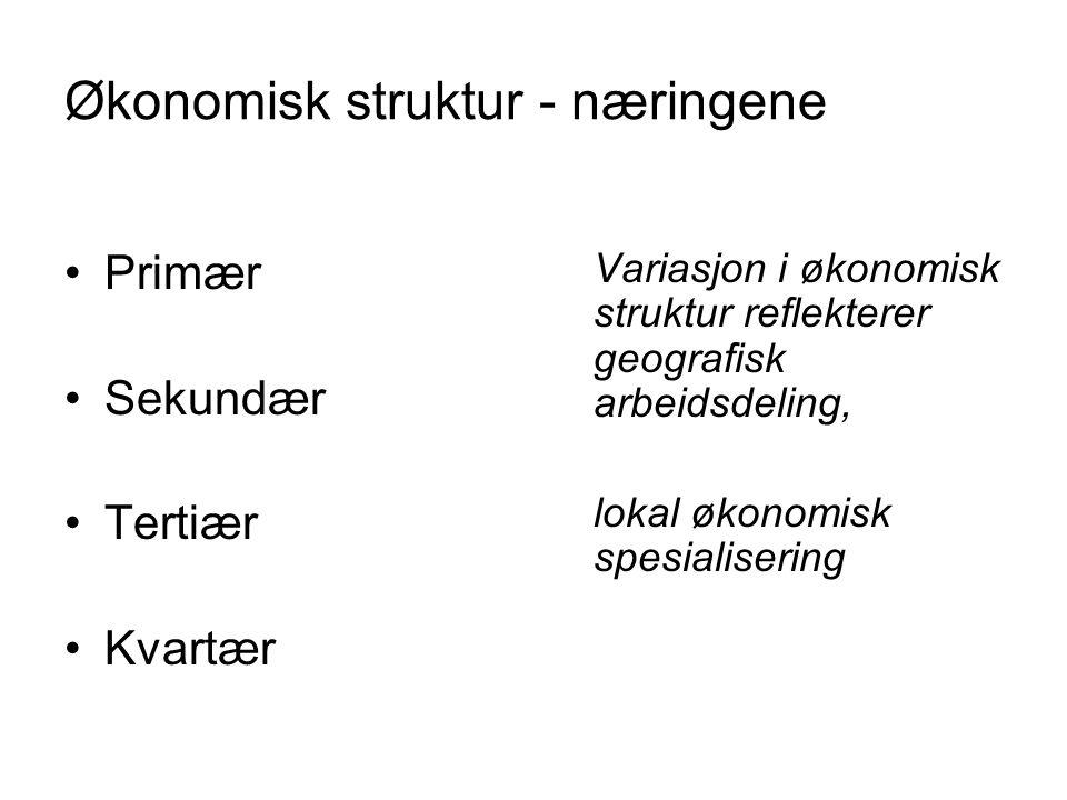 Økonomisk struktur - næringene