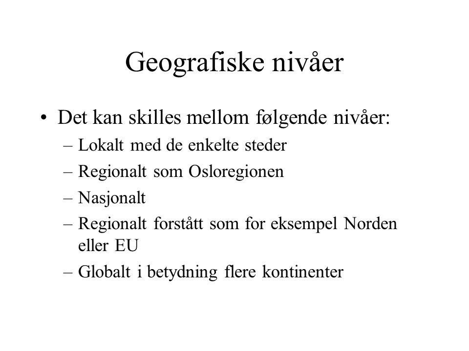 Geografiske nivåer Det kan skilles mellom følgende nivåer: