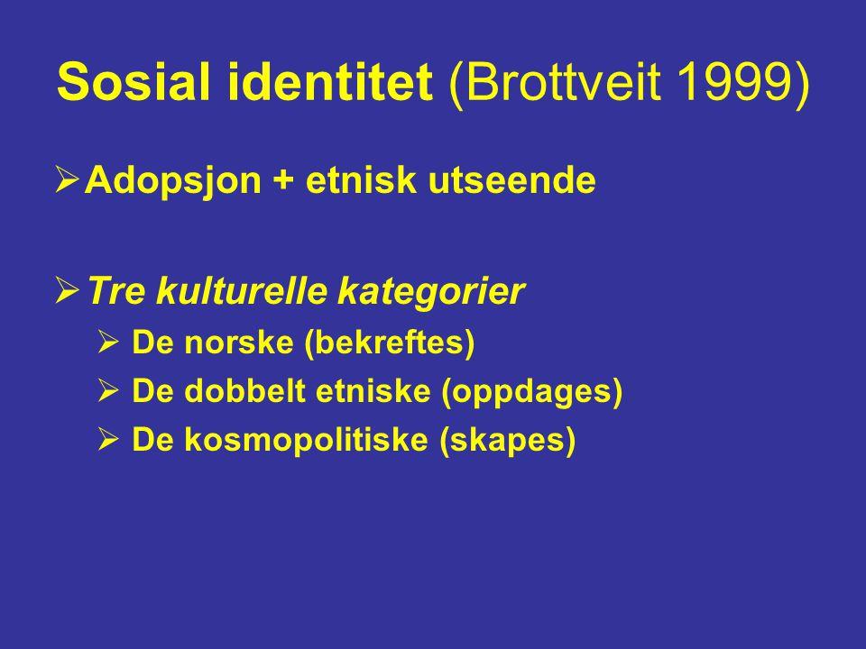 Sosial identitet (Brottveit 1999)