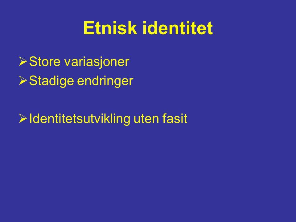 Etnisk identitet Store variasjoner Stadige endringer