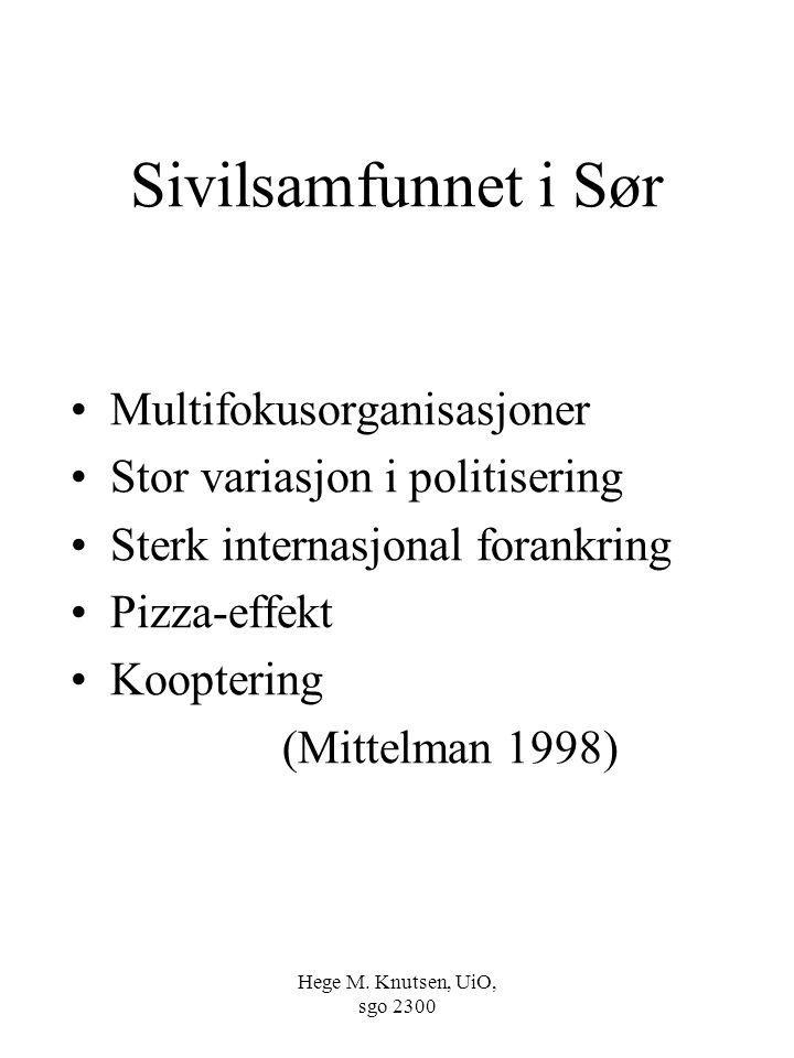 Sivilsamfunnet i Sør Multifokusorganisasjoner