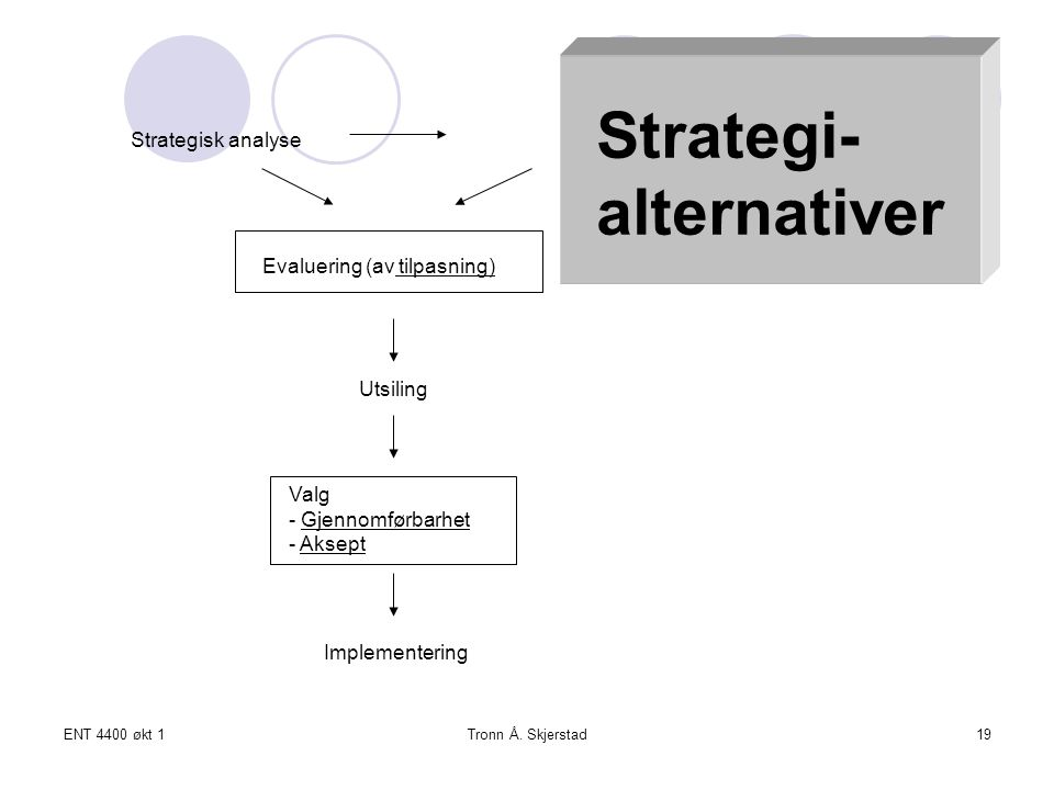 Strategi- alternativer