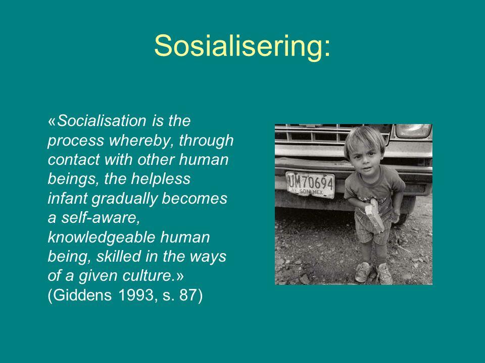 Sosialisering: