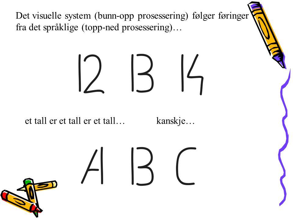 Det visuelle system (bunn-opp prosessering) følger føringer fra det språklige (topp-ned prosessering)…