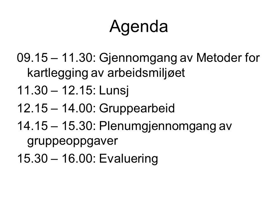 Agenda 09.15 – 11.30: Gjennomgang av Metoder for kartlegging av arbeidsmiljøet. 11.30 – 12.15: Lunsj.