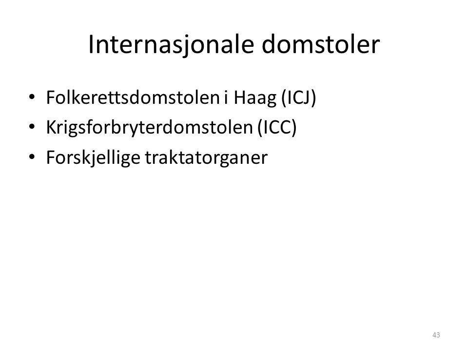 Internasjonale domstoler