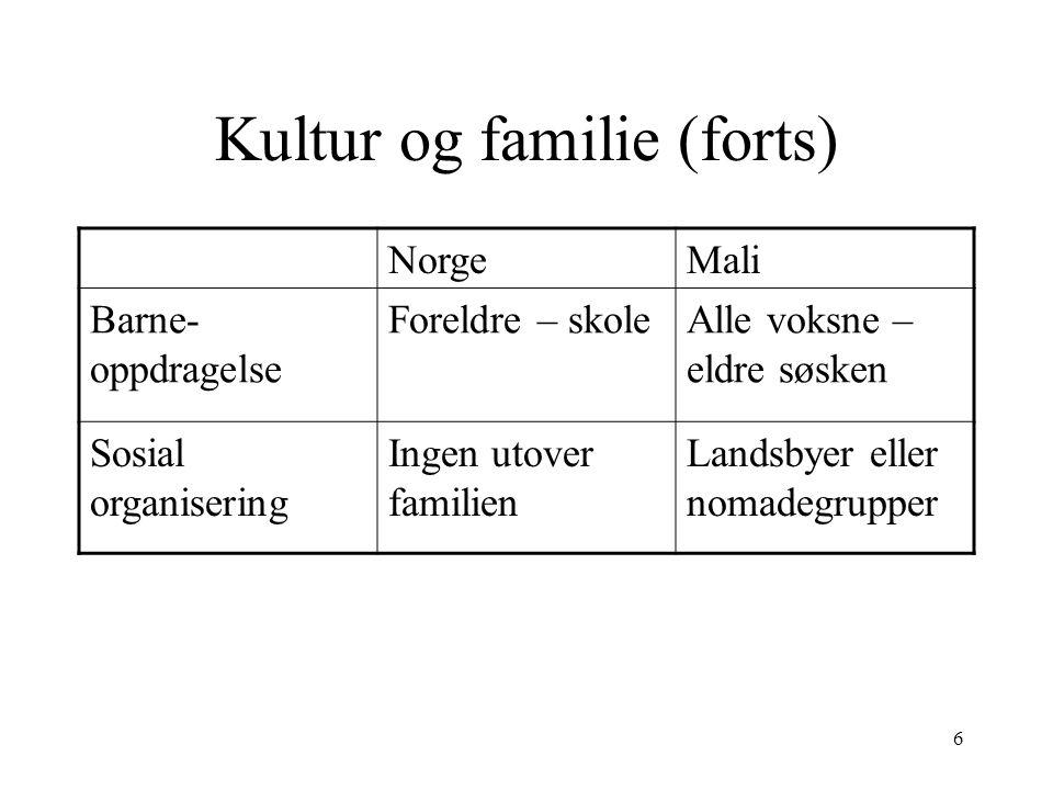 Kultur og familie (forts)