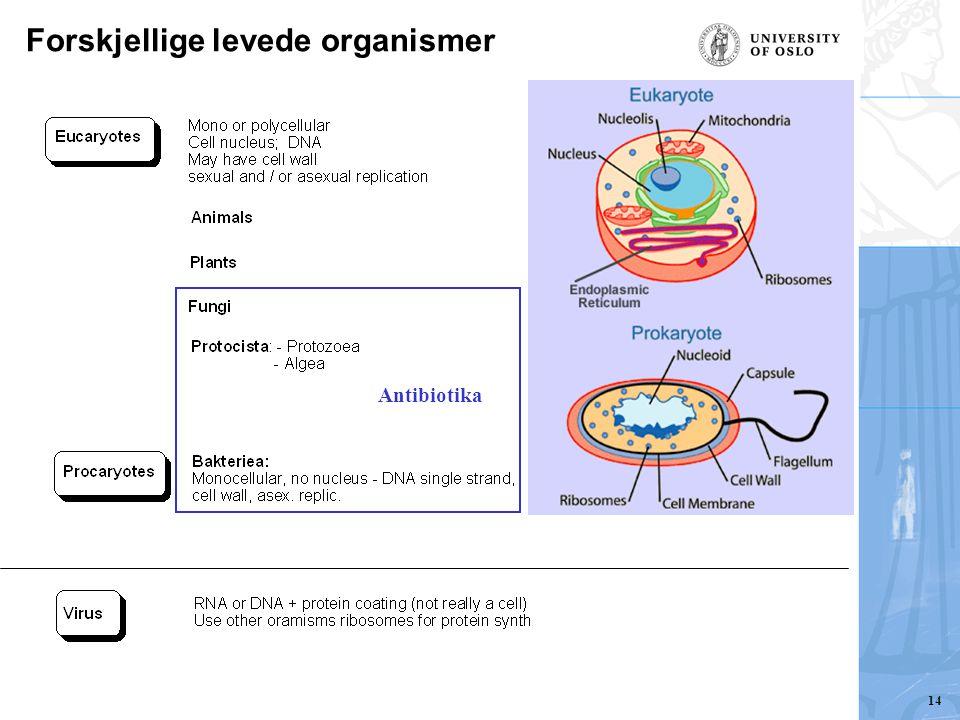 Forskjellige levede organismer