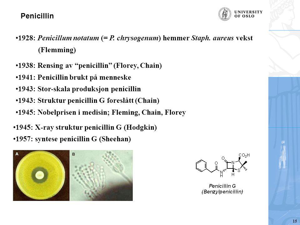 1928: Penicillum notatum (= P. chrysogenum) hemmer Staph. aureus vekst