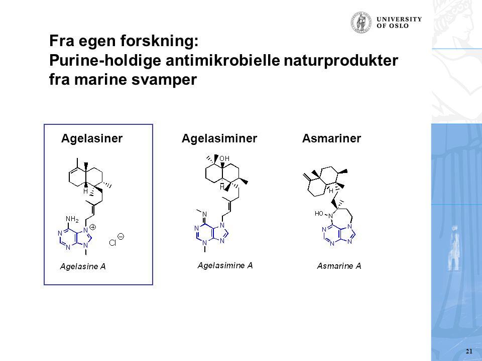 Purine-holdige antimikrobielle naturprodukter fra marine svamper