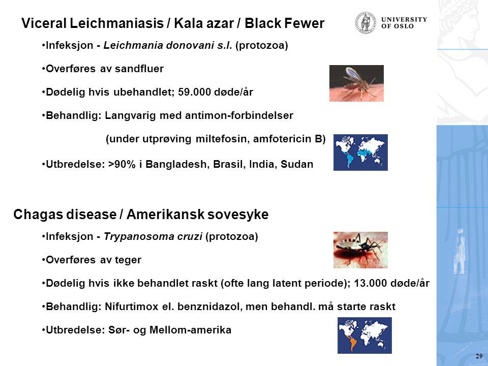Viceral Leichmaniasis / Kala azar / Black Fewer