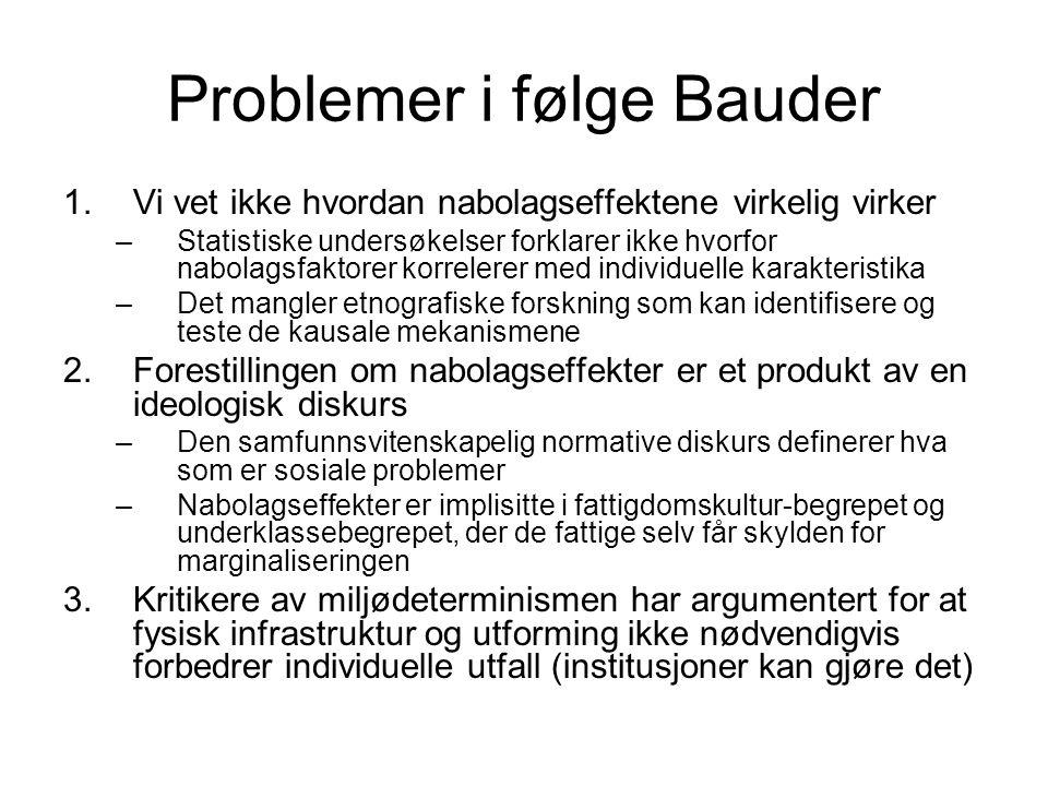 Problemer i følge Bauder