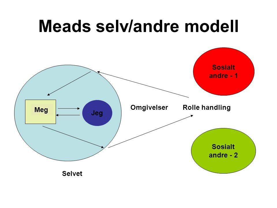 Meads selv/andre modell