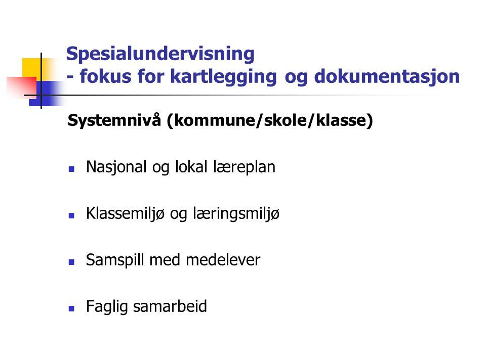 Spesialundervisning - fokus for kartlegging og dokumentasjon