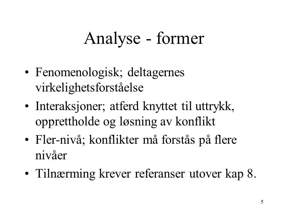 Analyse - former Fenomenologisk; deltagernes virkelighetsforståelse