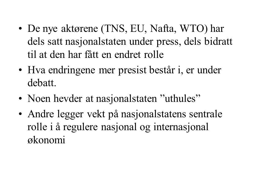 De nye aktørene (TNS, EU, Nafta, WTO) har dels satt nasjonalstaten under press, dels bidratt til at den har fått en endret rolle