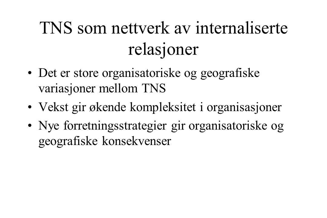 TNS som nettverk av internaliserte relasjoner