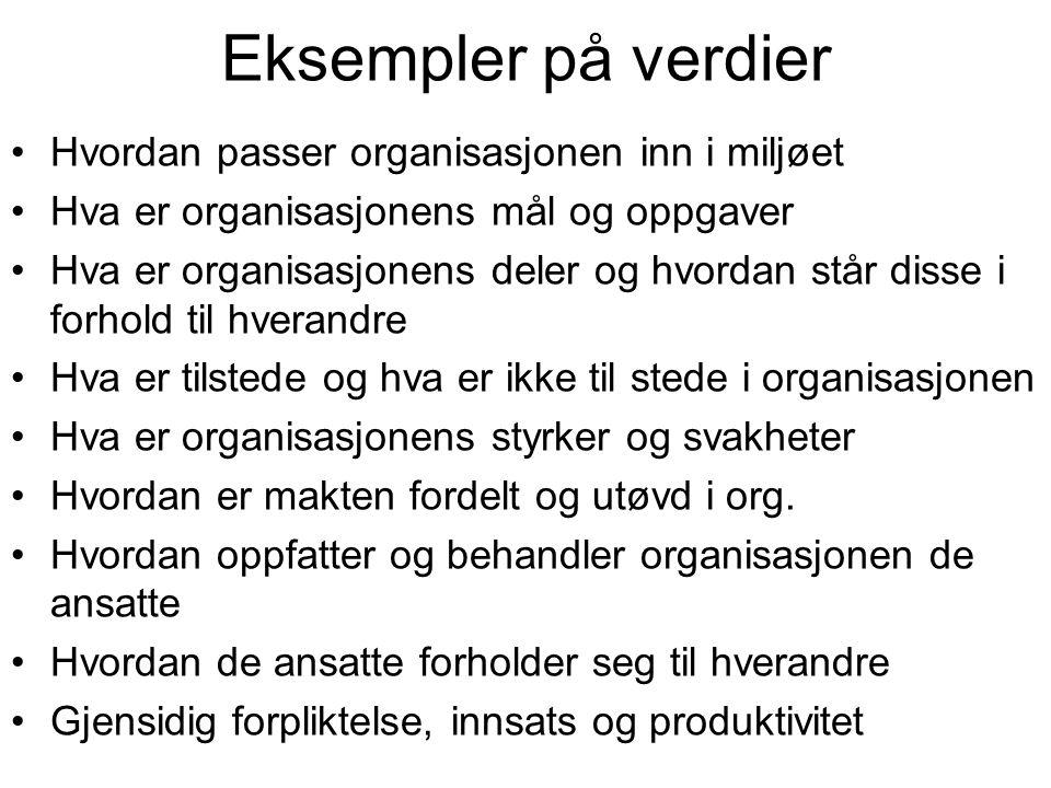 Eksempler på verdier Hvordan passer organisasjonen inn i miljøet
