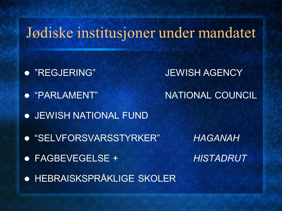 Jødiske institusjoner under mandatet
