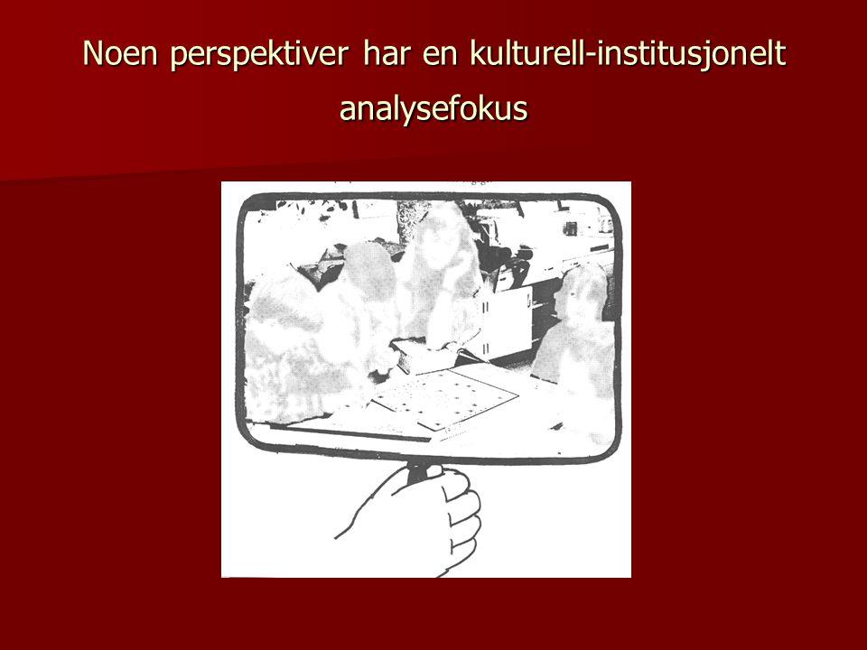 Noen perspektiver har en kulturell-institusjonelt analysefokus