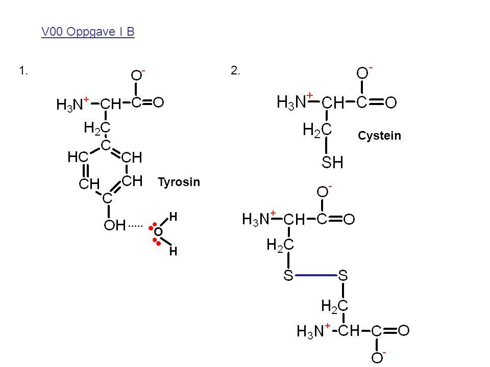 V00 Oppgave I B 1. 2. Cystein Tyrosin H O H