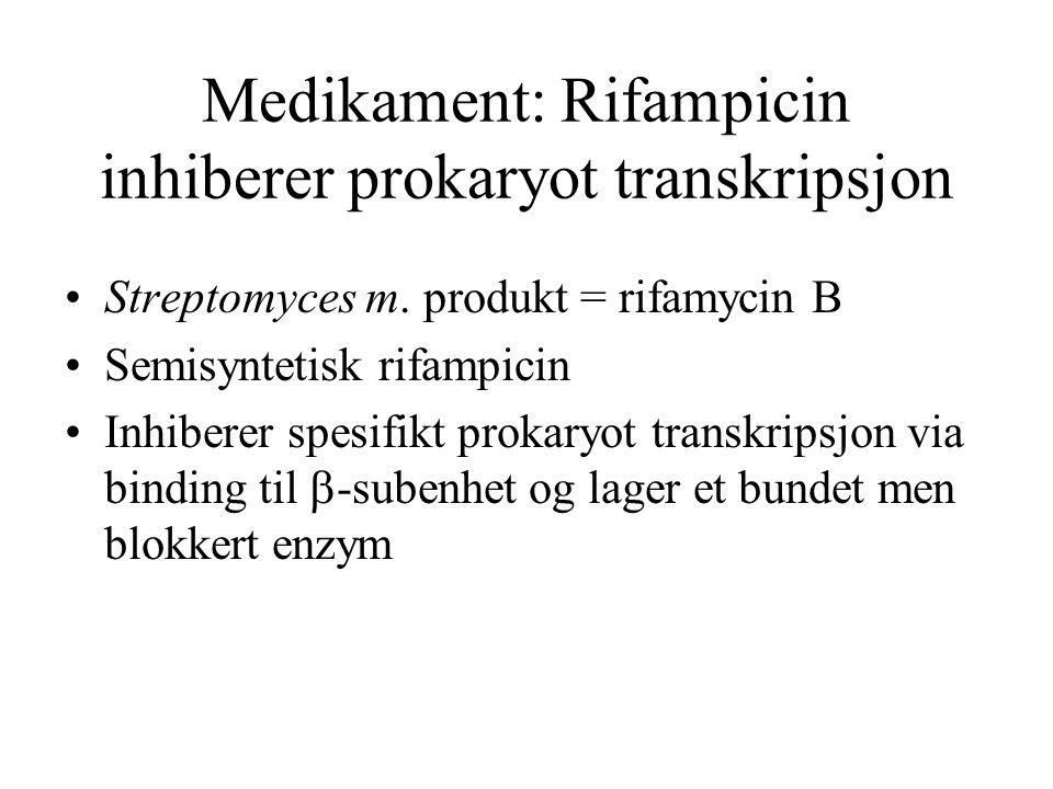 Medikament: Rifampicin inhiberer prokaryot transkripsjon
