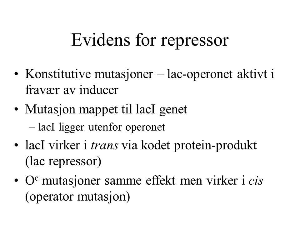 Evidens for repressor Konstitutive mutasjoner – lac-operonet aktivt i fravær av inducer. Mutasjon mappet til lacI genet.