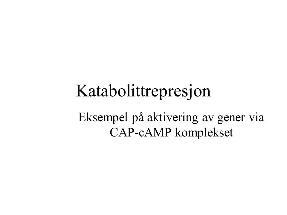 Eksempel på aktivering av gener via CAP-cAMP komplekset