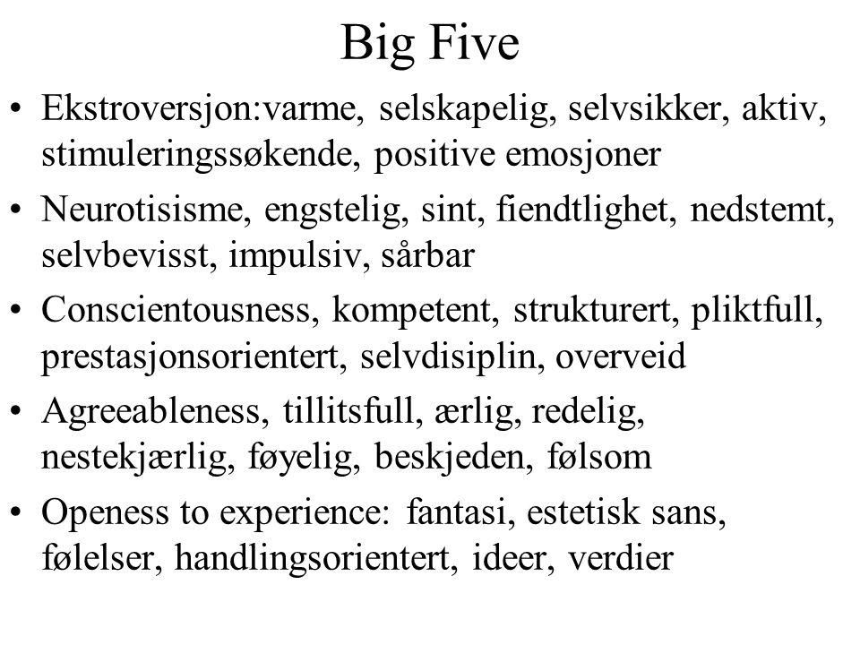 Big Five Ekstroversjon:varme, selskapelig, selvsikker, aktiv, stimuleringssøkende, positive emosjoner.