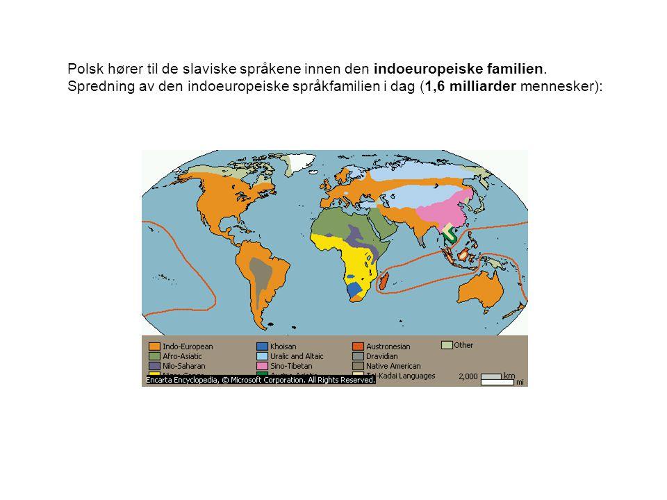 Polsk hører til de slaviske språkene innen den indoeuropeiske familien