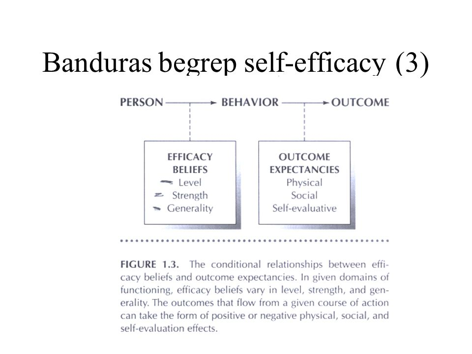 Banduras begrep self-efficacy (3)