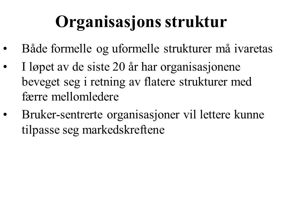 Organisasjons struktur