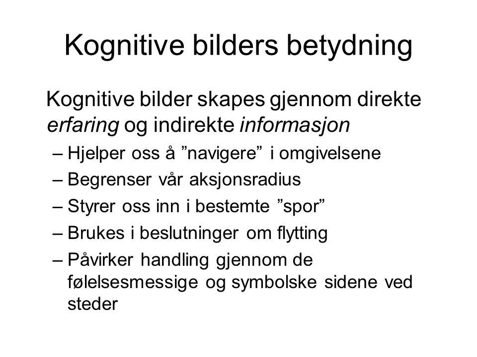 Kognitive bilders betydning