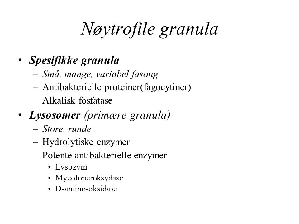 Nøytrofile granula Spesifikke granula Lysosomer (primære granula)