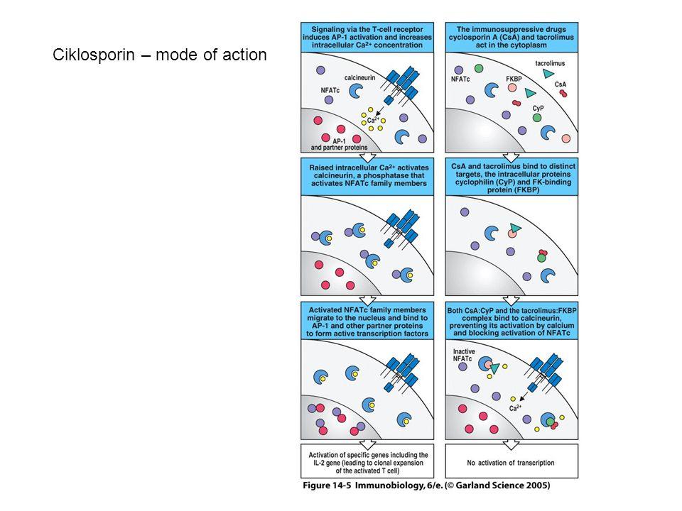 Ciklosporin – mode of action