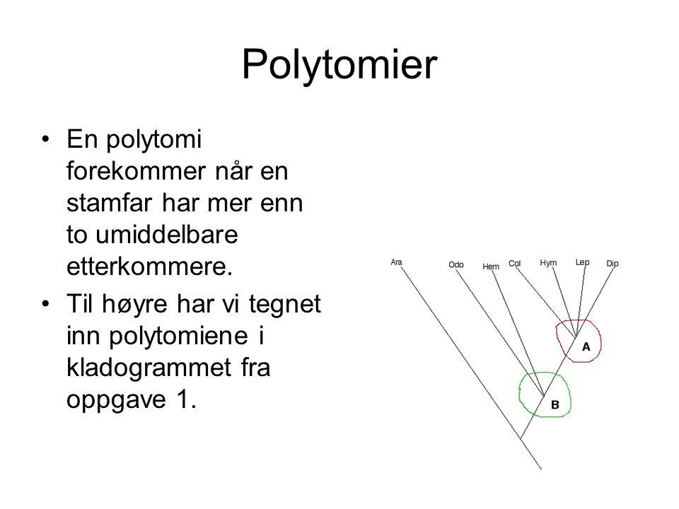Polytomier En polytomi forekommer når en stamfar har mer enn to umiddelbare etterkommere.