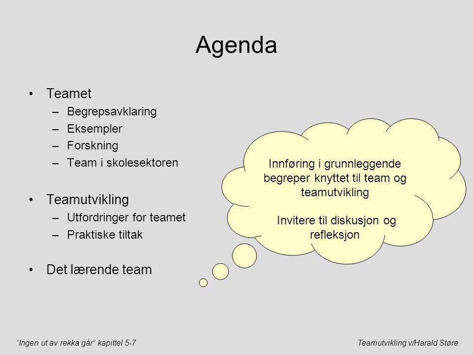 Agenda Teamet Teamutvikling Det lærende team Begrepsavklaring
