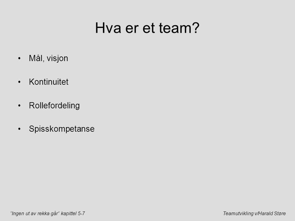 Hva er et team Mål, visjon Kontinuitet Rollefordeling Spisskompetanse